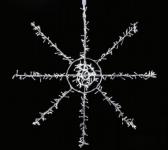 Polární hvězda - 135 cm